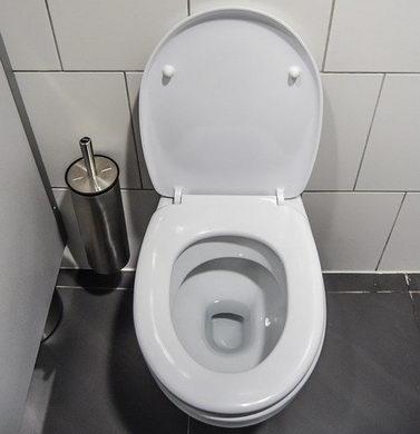 wc verstopft